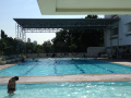swimming-pool-sukhumvit-71-sports-club.png
